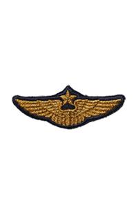Шеврон Эмблема ВВС РФ на тулью фуражки