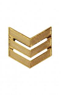 Знак различия Сержант п/а